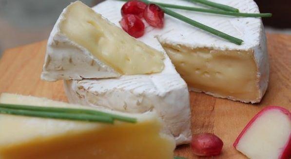 Sada na vyrobu syra
